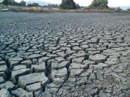 DroughtPhoto~shrink